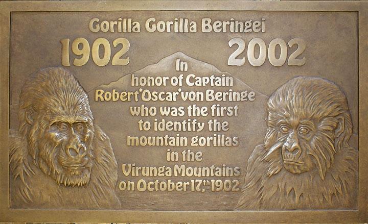 GORILLA-plaque